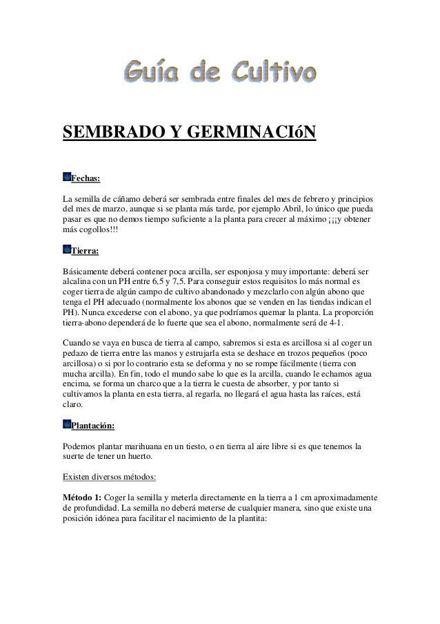 SEMBRADO Y GERMINACIóN Fechas: La semilla de cáñamo deberá ser sembrada entre finales del mes de febrero y principios del ...