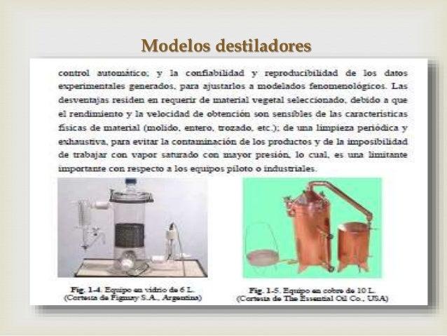 guia de aceites esenciales pdf