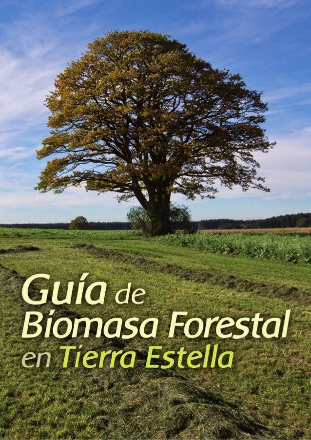 Glosario de términos Cifras comarcales (MUP): MONTE DE UTILIDAD PÚBLICA Los Montes de Utilidad Pública (MUP) son montes de...