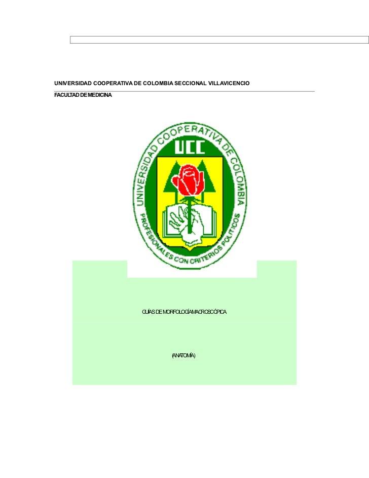 UNIVERSIDAD COOPERATIVA DE COLOMBIA SECCIONAL VILLAVICENCIOFACULTAD DE MEDICINA                          GUÍAS DE MORFOLOG...