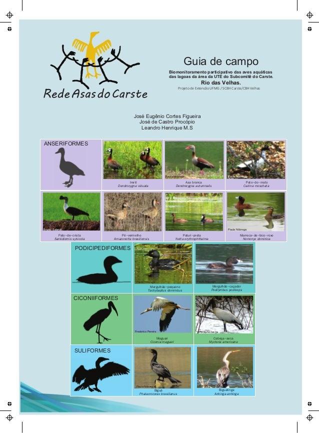 Projeto de Extensão UFMG / SCBH Carste/CBH Velhas Biomonitoramento participativo das aves aquáticas das lagoas da área da ...