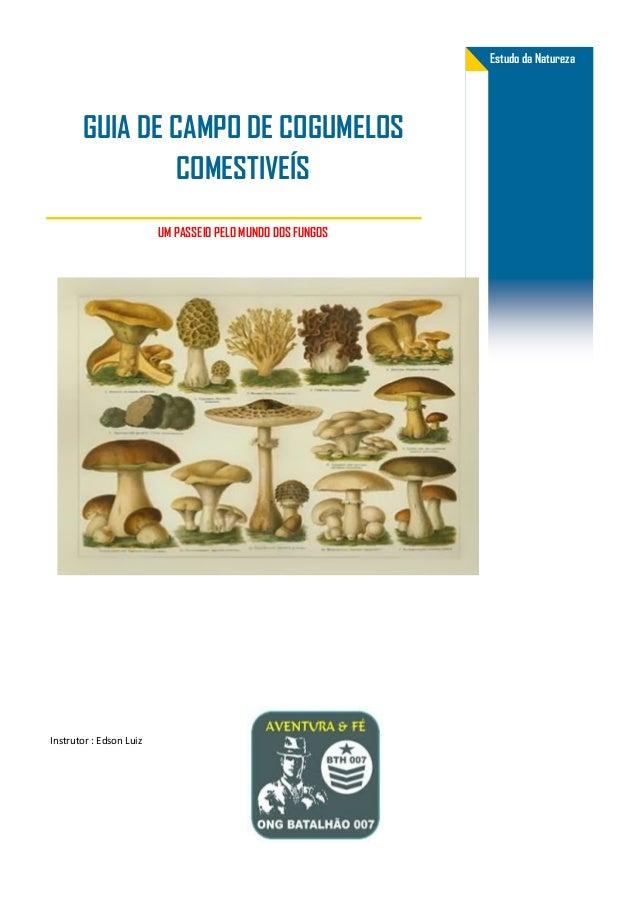 UM PASSEIO PELO MUNDO DOS FUNGOS Estudo da Natureza GUIA DE CAMPO DE COGUMELOS COMESTIVEÍS Instrutor : Edson Luiz