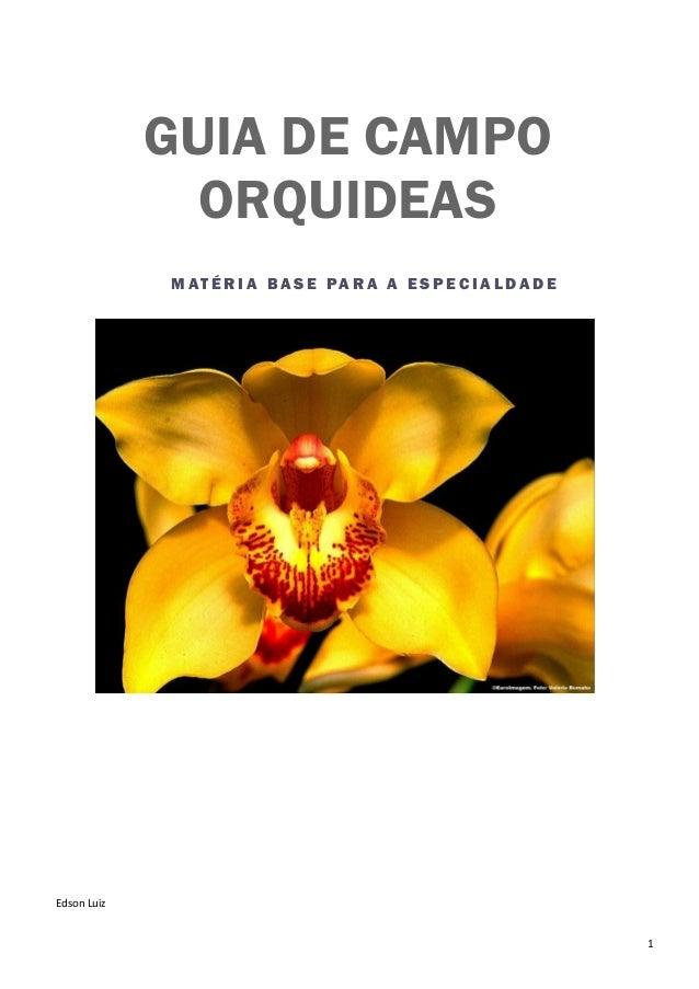 1 M AT É R I A B A S E PA R A A E S P E C I A L DA D E GUIA DE CAMPO ORQUIDEAS Edson Luiz
