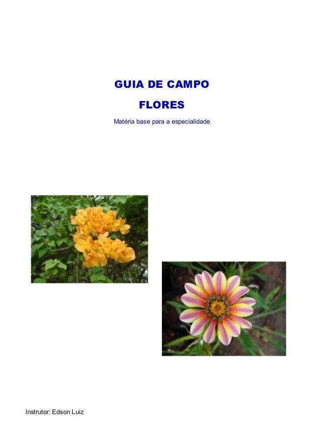 GUIA DE CAMPO FLORES Matéria base para a especialidade Instrutor: Edson Luiz