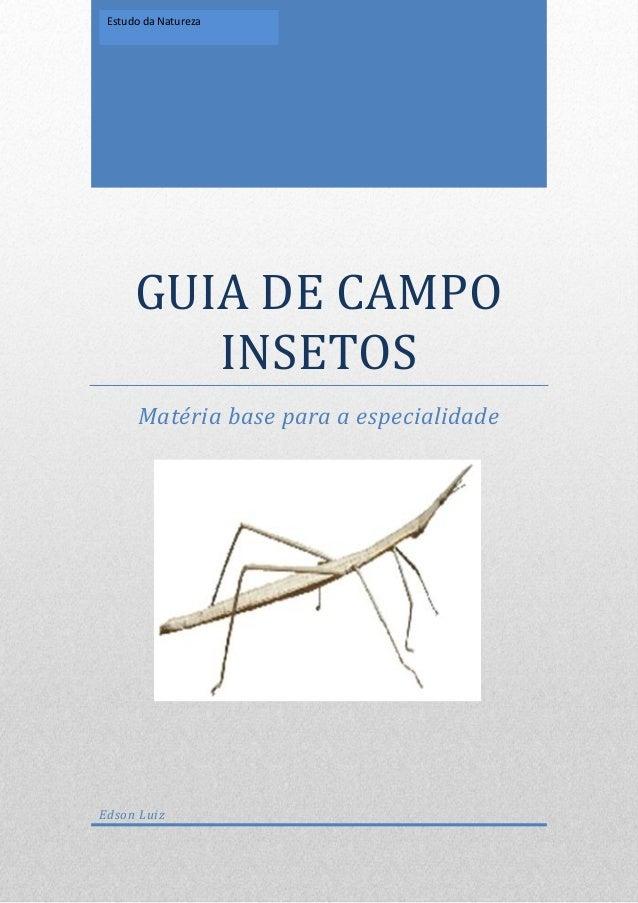 GUIA DE CAMPO INSETOS Matéria base para a especialidade Edson Luiz Estudo da Natureza