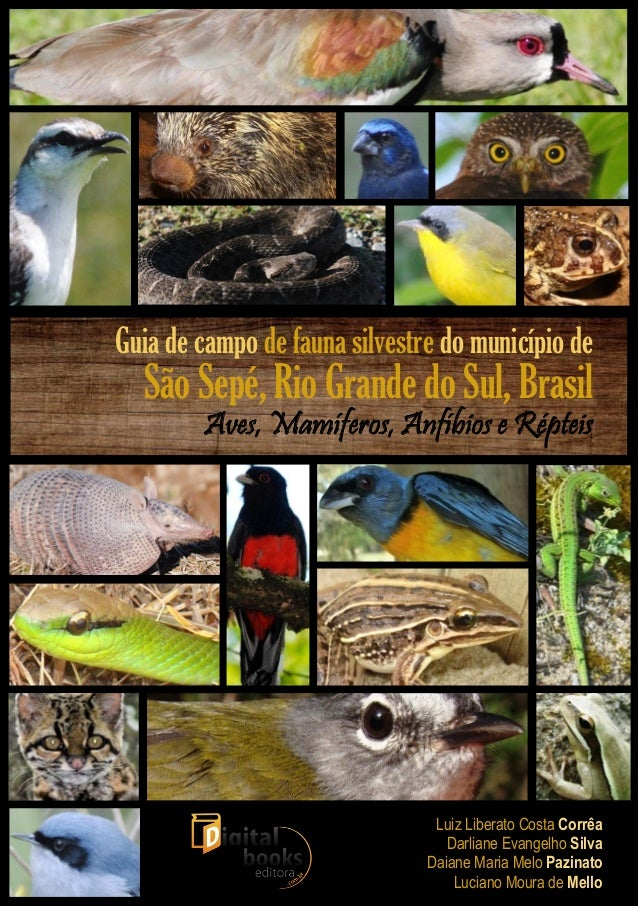 + Guia de campo de fauna silvestre do município de São Sepé, Rio Grande do Sul, Brasil Aves, Mamíferos, Anfíbios e Répteis...
