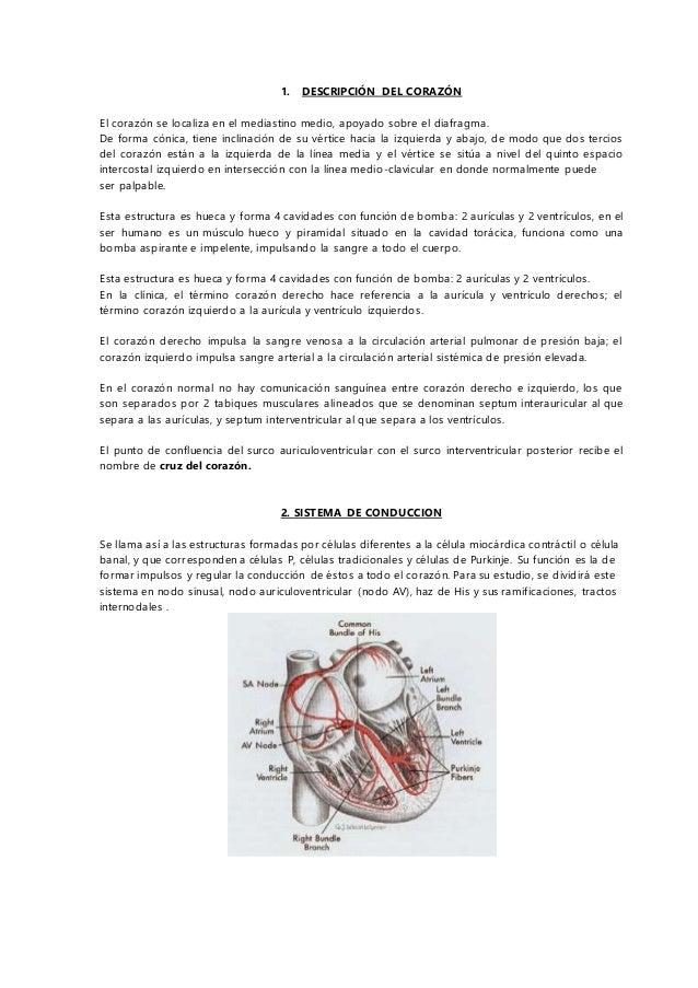 GUIA DE ESTUDIO DE LA MATERIA DE CARDIOVASCULAR ENMH