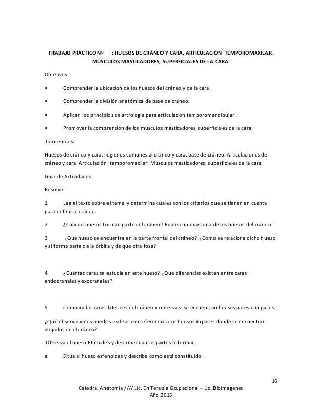 Bonito Primer Año Cuestionarios Mbbs Anatomía Regalo - Imágenes de ...