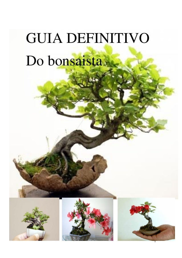 1 GUIA DEFINITIVO Do bonsaista