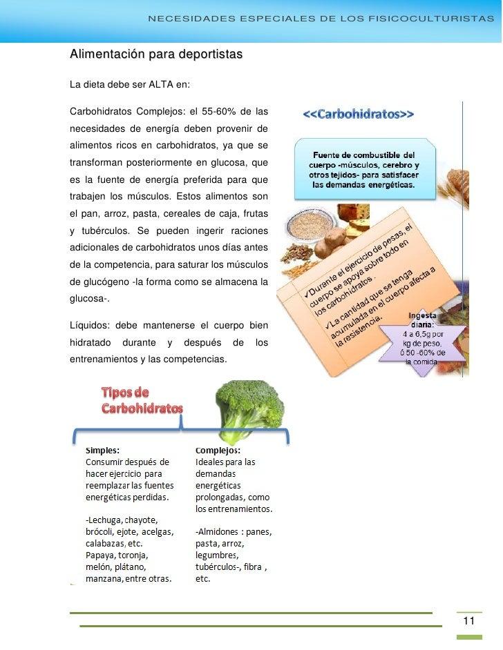 fisicoculturismo para principiantes pdf free