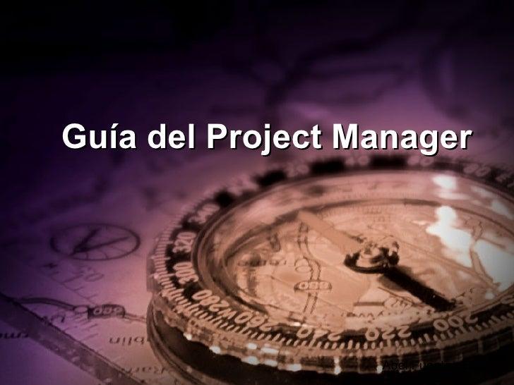 Guía del Project Manager Abel Fuentes Garza