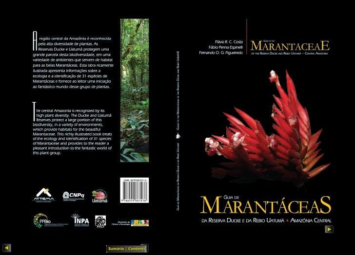 Autores/Authors ::      Flávia R. C. Costa      Fábio Penna Espinelli      Fernando O. G. FigueiredoProjeto gráfico e prod...