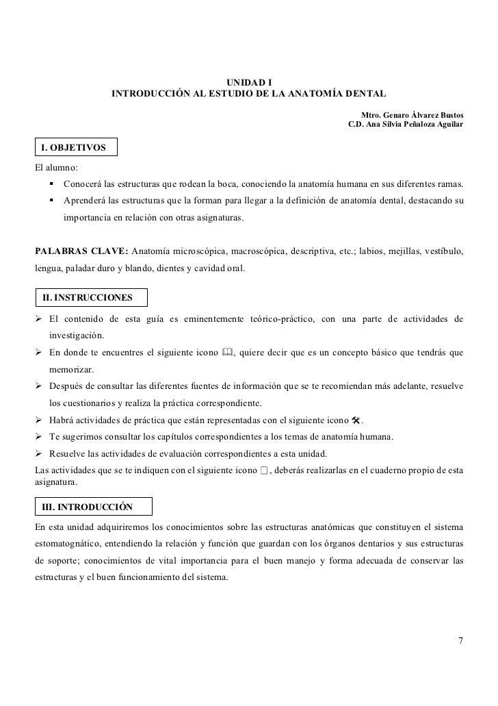 Fantástico Libro Para Colorear De Anatomía Dental Bandera - Dibujos ...