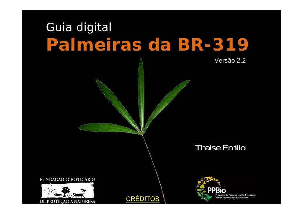 Guia de palmeiras da br 319