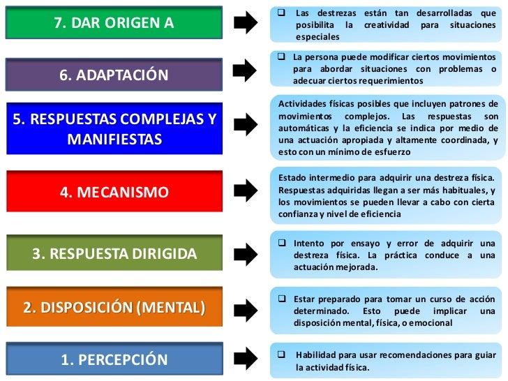 VERBOS PARA EL DOMINIO PSICOMOTOR