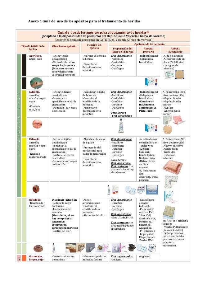 Guía De Referencia Rápida Para El Tratamiento úlceras Por Presió