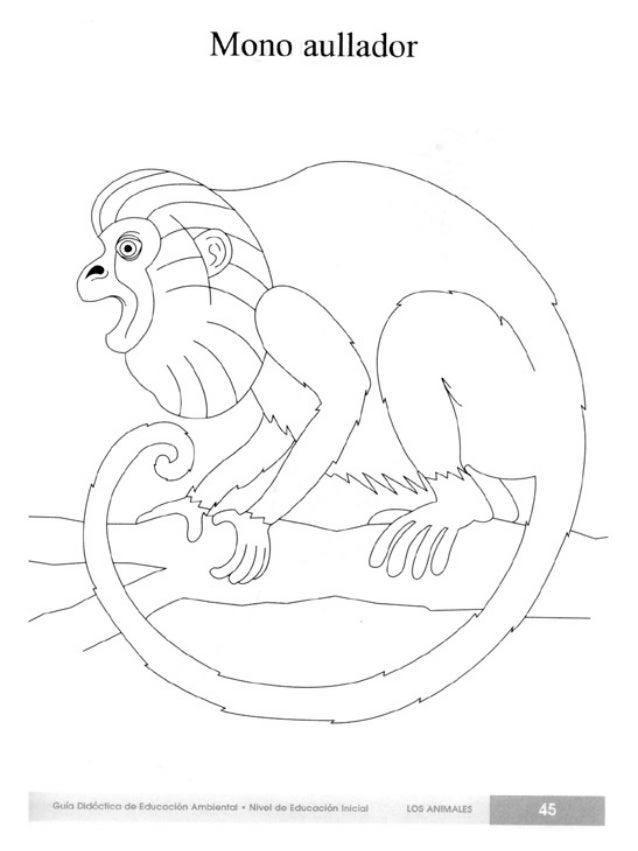 Lujoso Página Para Colorear De Mono Aullador Imagen - Dibujos Para ...