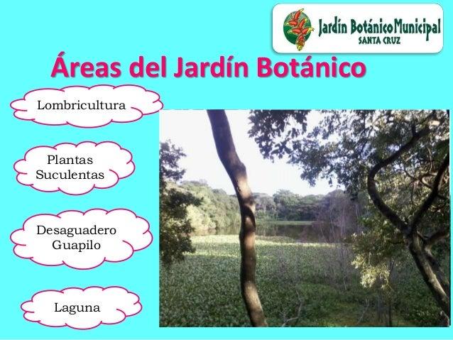 Jardin botanico de santa cruz de la sierra for Caracteristicas de un jardin botanico