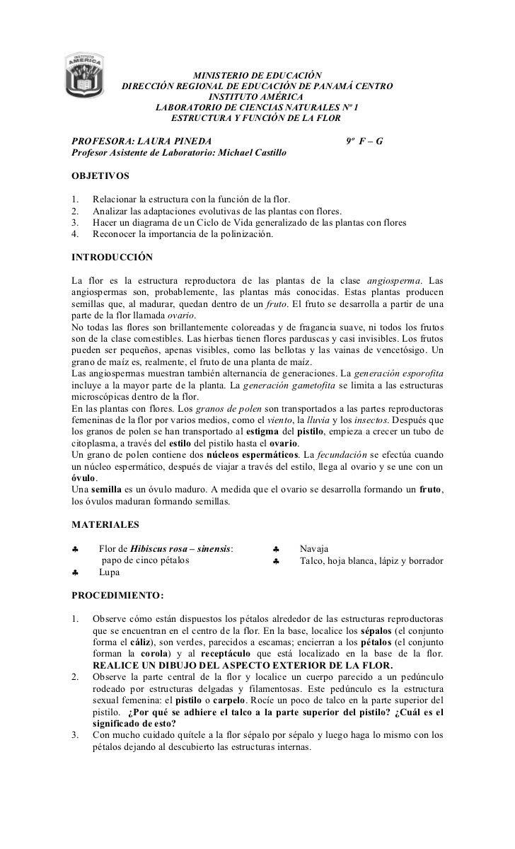 MINISTERIO DE EDUCACIÓN            DIRECCIÓN REGIONAL DE EDUCACIÓN DE PANAMÁ CENTRO                            INSTITUTO A...