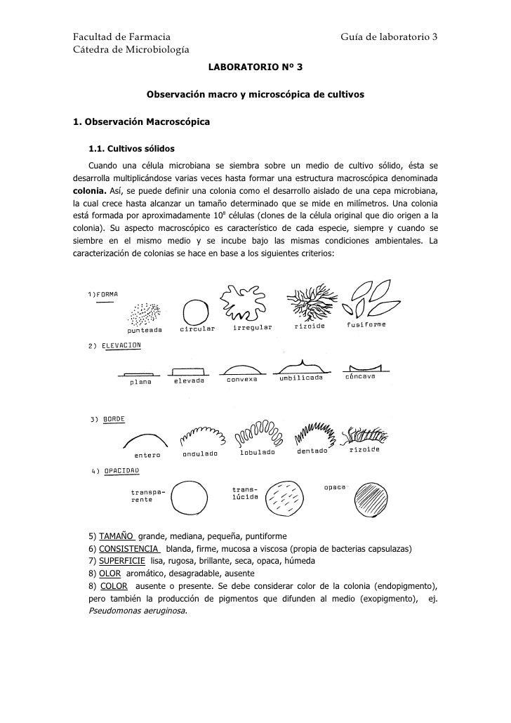 Facultad de Farmacia                                                Guía de laboratorio 3 Cátedra de Microbiología        ...