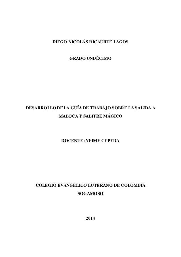 DIEGO NICOLÁS RICAURTE LAGOS  GRADO UNDÉCIMO  DESARROLLO DE LA GUÍA DE TRABAJO SOBRE LA SALIDA A  MALOCA Y SALITRE MÁGICO ...