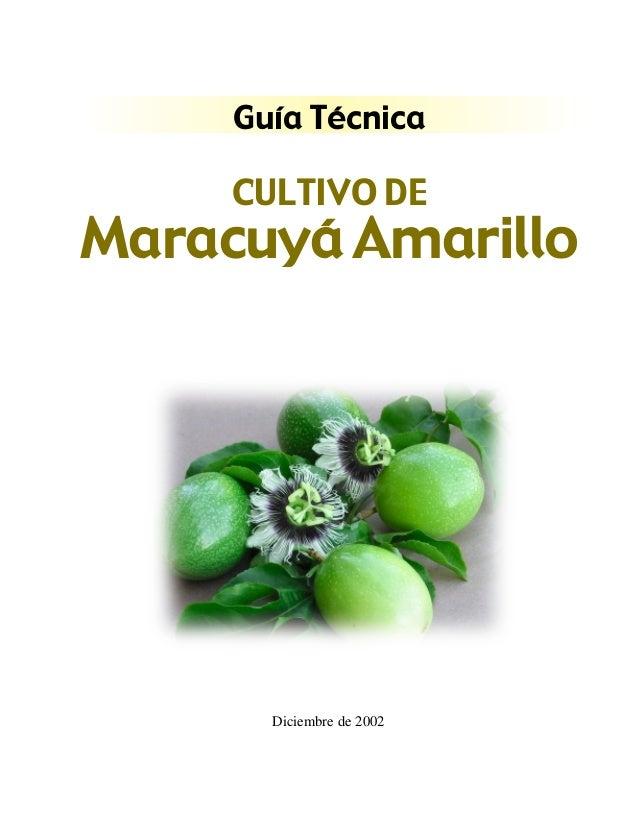 Guía Técnica  CULTIVO DE  Maracuyá Amarillo  Diciembre de 2002