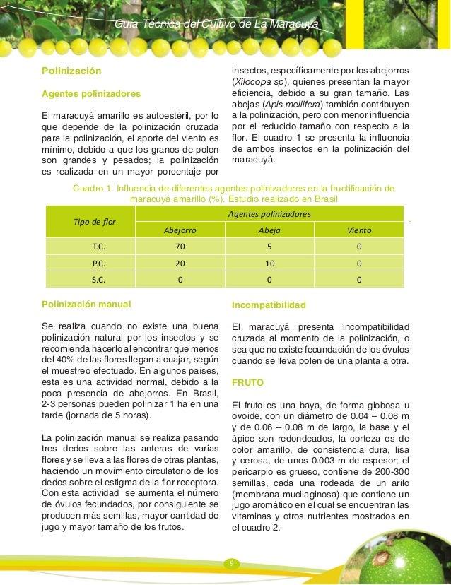 Guia maracuya 2011 1 for Incompatibilidad en plantas