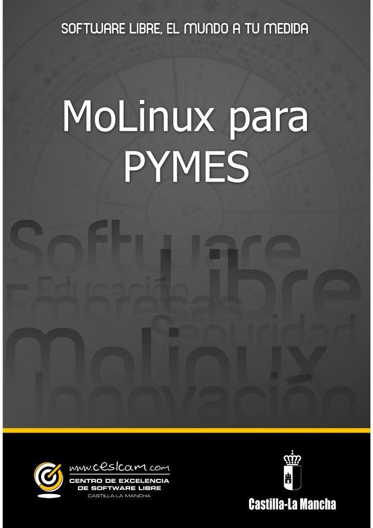 Guia molinux para pymes