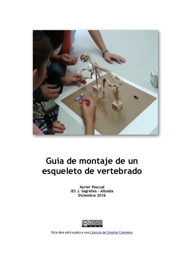 Guía de montaje de un esqueleto de vertebrado Xavier Pascual IES J. Segrelles - Albaida Diciembre 2016 Esta obra está suje...