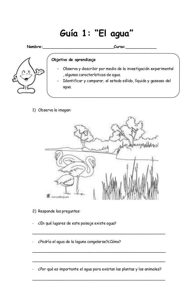 """Guía 1: """"El agua""""Nombre:______________________________Curso:_____________             Objetivo de aprendizaje             ..."""
