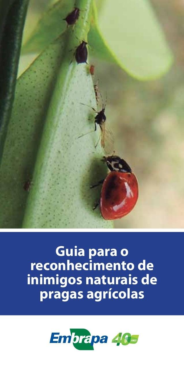 Guia para o reconhecimento de inimigos naturais de pragas agrícolas