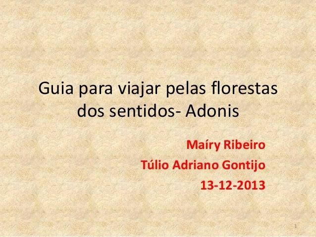 Guia para viajar pelas florestas dos sentidos- Adonis Maíry Ribeiro Túlio Adriano Gontijo 13-12-2013 1