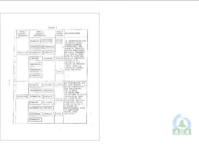 Manual de Operación del PCEIA (Ficha Ambiental)