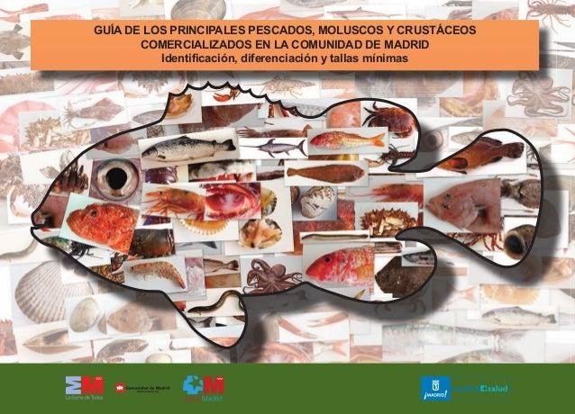 GUÍA DE LOS PRINCIPALES PESCADOS, MOLUSCOS Y CRUSTÁCEOS COMERCIALIZADOS EN LA COMUNIDAD DE MADRID Identificación, diferenc...