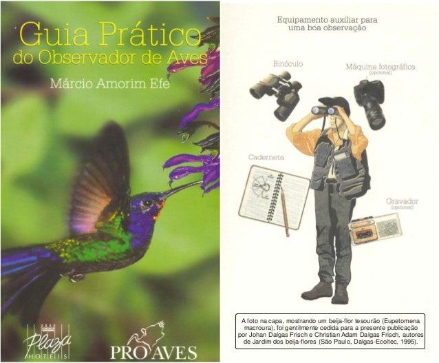 A foto na capa, mostrando um beija-flor tesourão (Eupetomena macroura), foi gentilmente cedida para a presente publicação ...
