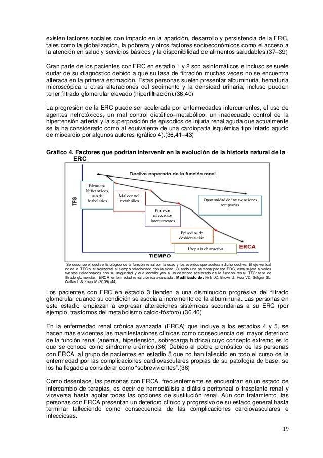 19 existen factores sociales con impacto en la aparición, desarrollo y persistencia de la ERC, tales como la globalización...