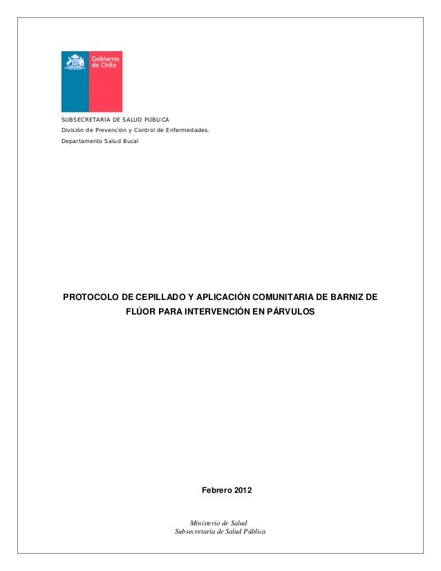 Ministerio de Salud Subsecretaría de Salud Pública SUBSECRETARÍA DE SALUD PÚBLICA División de Prevención y Control de Enfe...