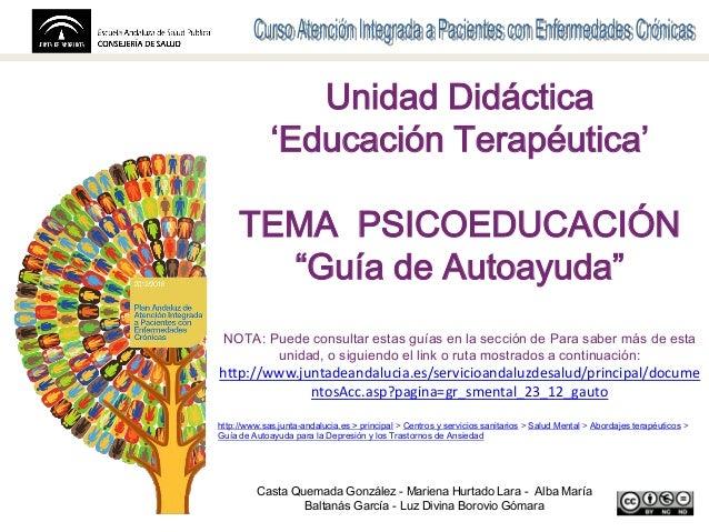 """Nombre de la presentación Contribuyentes y organizaciones Unidad Didáctica 'Educación Terapéutica' TEMA PSICOEDUCACIÓN """"Gu..."""