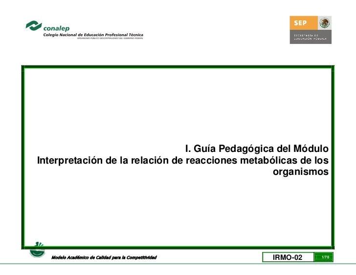 I. Guía Pedagógica del MóduloInterpretación de la relación de reacciones metabólicas de los                               ...