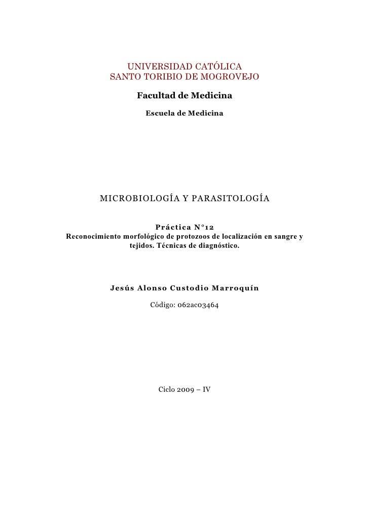 Guia XII: Reconocimiento morfológico de protozoos de localización en sangre y tejidos.