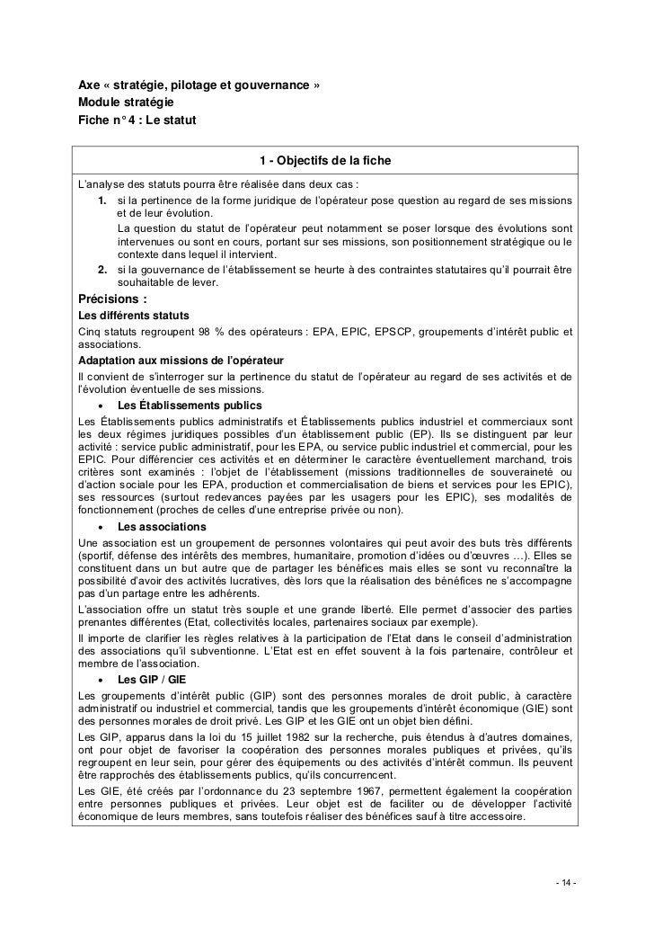 Axe « stratégie, pilotage et gouvernance »Module stratégieFiche n° 4 : Le statut                                       1 -...