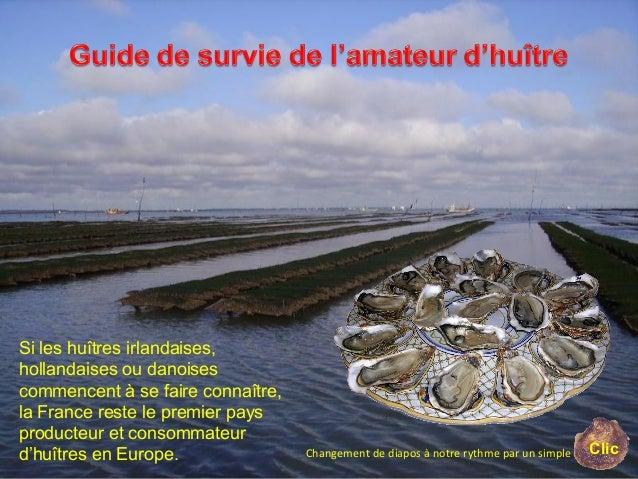 Si les huîtres irlandaises, hollandaises ou danoises commencent à se faire connaître, la France reste le premier pays prod...