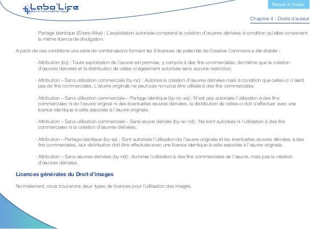 Chapitre 4 - Droits d'auteur Droits gérés Les licences d'images à droits gérés ont des restrictions d'utilisation comme le...