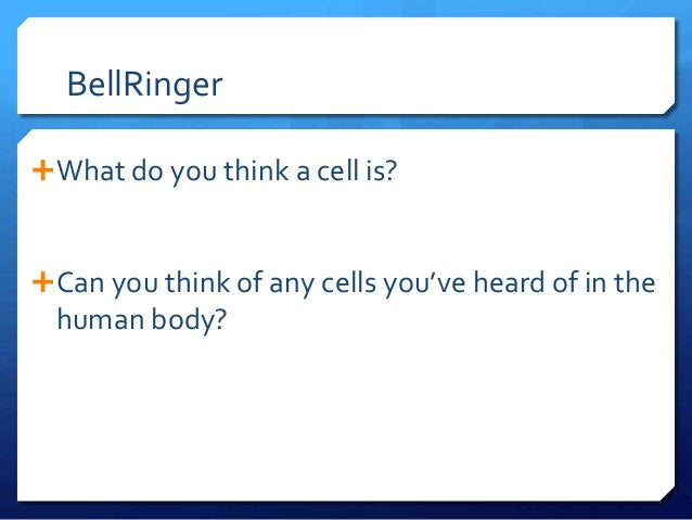 BellRinger What do you think a cell is? Can you think of any cells you've heard of in the human body?
