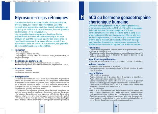 29 hCG ou hormone gonadotrophine chorionique humaine L'hCG est une glycoprotéine à deux chaînes protéiques : α, commune ég...