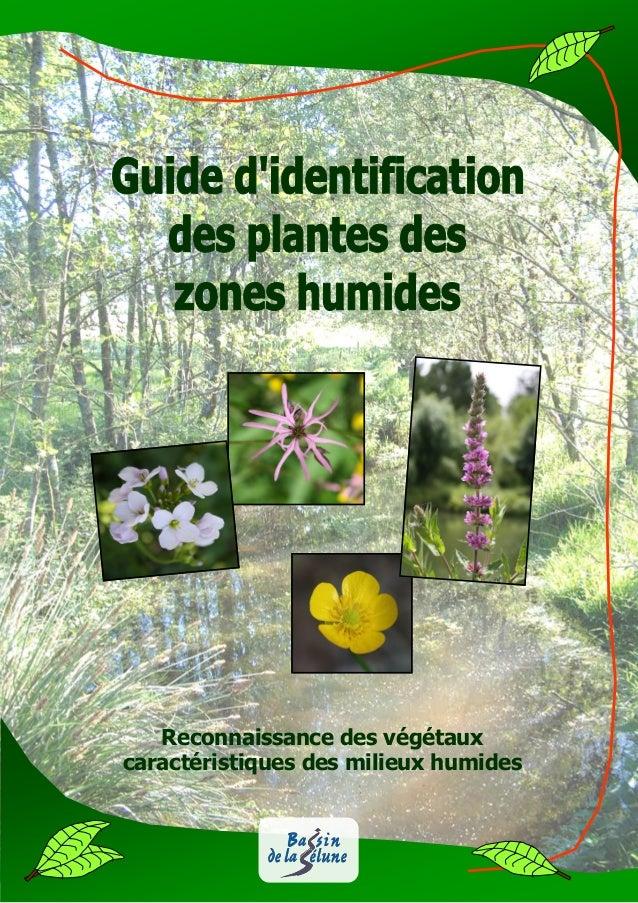 guide d 39 identification des plantes des zones humides. Black Bedroom Furniture Sets. Home Design Ideas