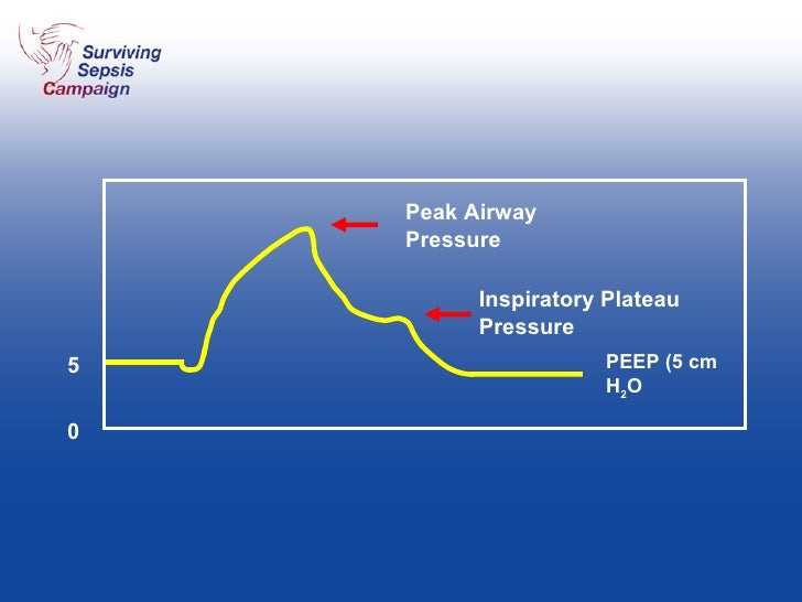 Peak Airway Pressure Inspiratory Plateau Pressure PEEP (5 cm H 2 O 5 0
