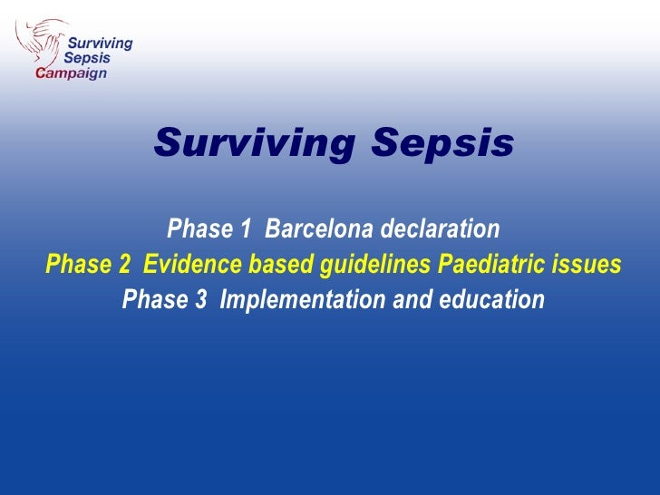 Phase 1  Barcelona declaration Phase 2  Evidence based guidelines Paediatric issues Phase 3  Implementation and education ...