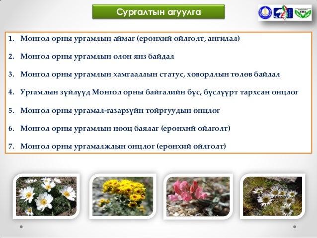 Guide surgalt flora of mongolia Slide 2