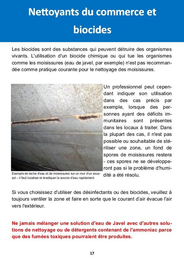 Guide Sur Les Moisissures LHumidite Et La Maison Galenus Regenerati